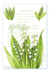 Set of 3 Lily of the Valley Envelope Sachets - Roses And Teacups