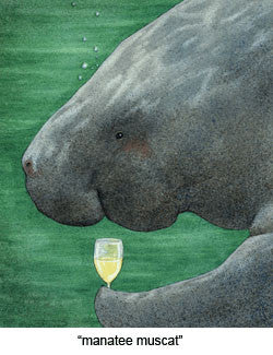 Manatee Muscat by Will Bullas