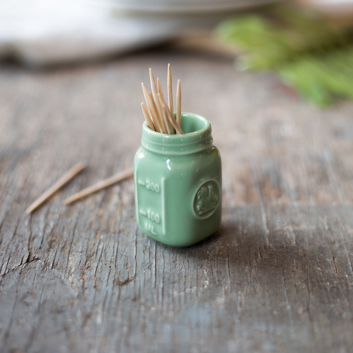 Mason Jar Toothpick Holder Sage