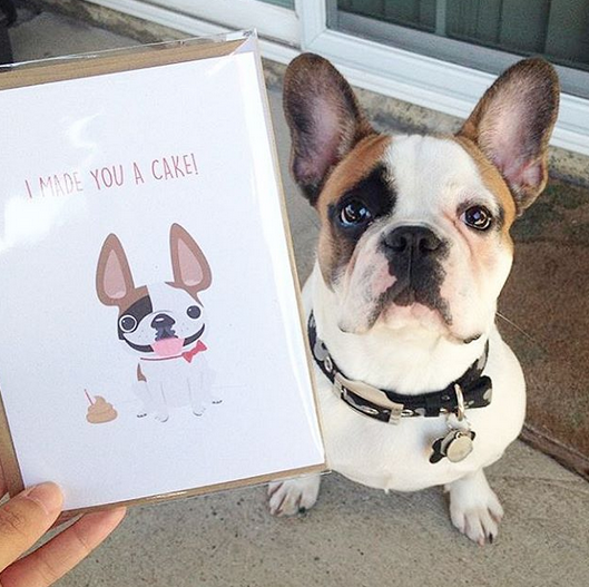French Bulldog Love Custom Frenchie Design
