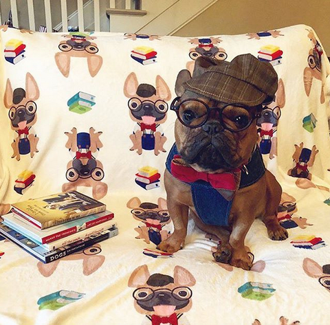 French Bulldog Love Custom Orders