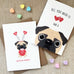 My Favorite - Pug Valentine's Day Card