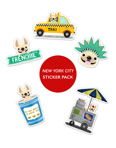 NEW YORK CITY STICKER PACK - Set of 5 - Waterproof Vinyl Stickers
