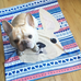 Cream / Geometric French Bulldog Fleece Blanket - Small - French Bulldog Love - 2
