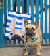Fawn / Navy Striped French Bulldog Tote Bag - French Bulldog Love - 4