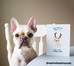 CUSTOMIZABLE Frenchie Rudolph French Bulldog Holiday Card - French Bulldog Love - 3