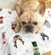 Fuzzy Holiday French Bulldog Fleece Blanket - Small - French Bulldog Love - 2