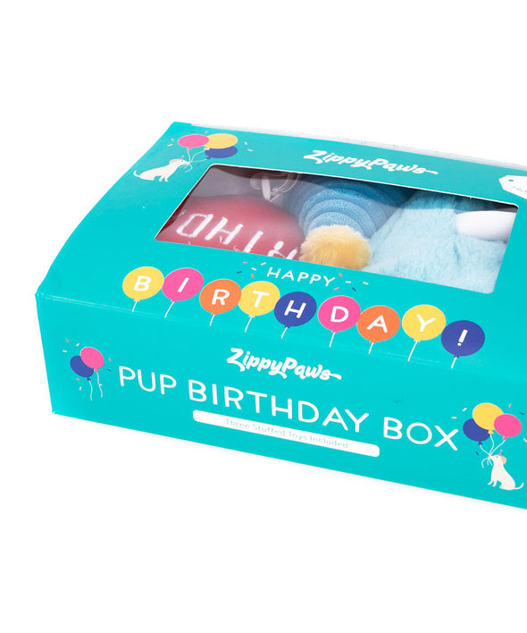 Puppy Birthday Box by ZippyPaws