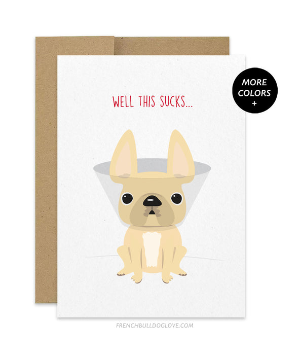 Well This Sucks - French Bulldog Get Well Soon Card