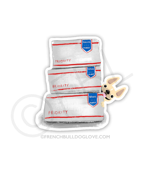 #100DAYPROJECT 4/100 - YOU'VE GOT MAIL VINYL STICKER