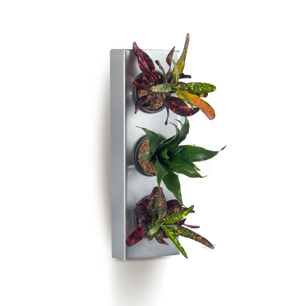 Rectangle Wall Planter - Cardboard