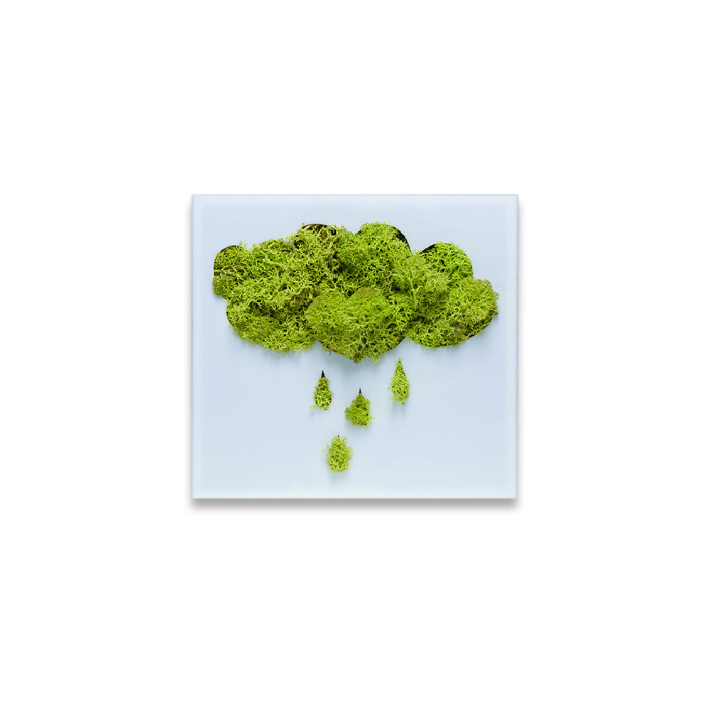Moss Decor - Rain Cloud