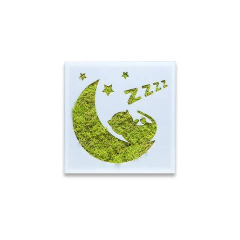 Moss Decor - Sleepy