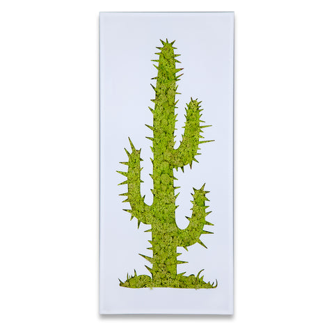 Moss Decor - XL Cactus