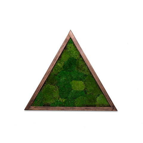 Triangle - Wall Garden