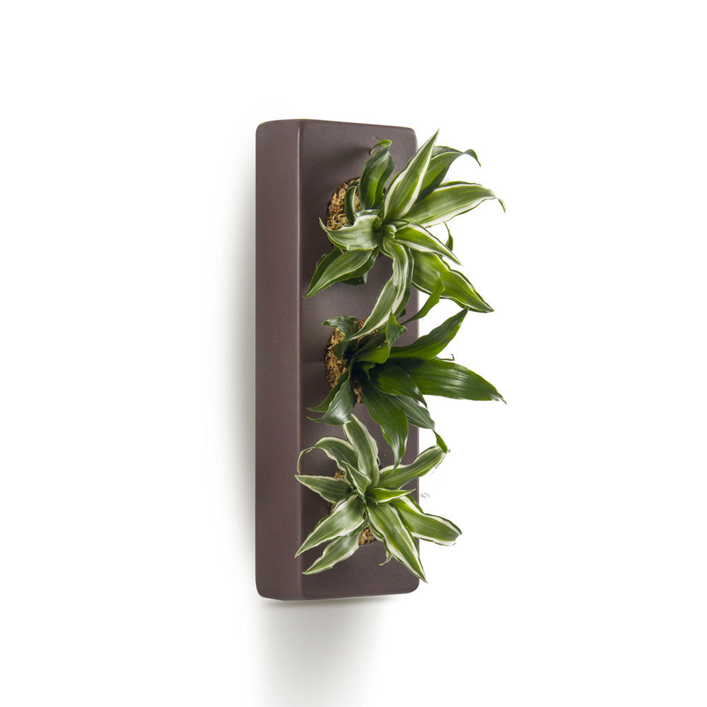 Rectangle Wall Planter - Ceramic