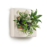 Mega Square Wall Planter - Ceramic
