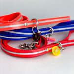Reflective Brahma Web Pet Leash