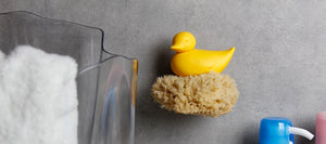 qualy duck sponge holder