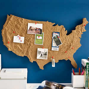 Design Ideas Cross country message cork board