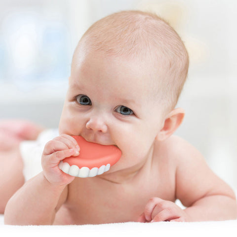 fred and friends false teeth teether