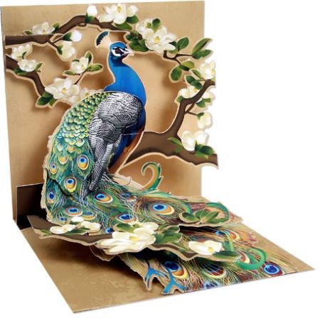 Up with paper 1037 peacock and magnolias 3d pop up card