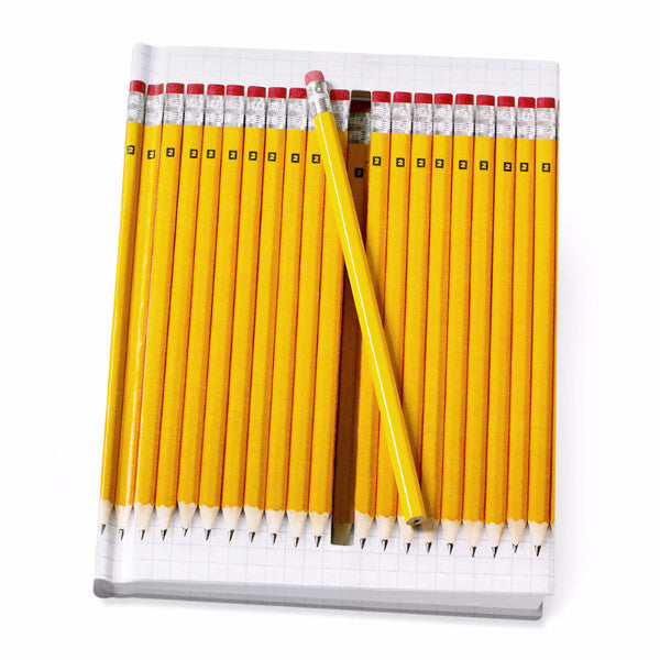 Moma hidden pencil notebook