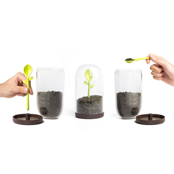 Qualy Sprout coffee tea jar