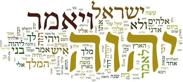 Biblical Hebrew Study Guide