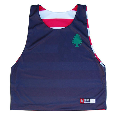 Massachusetts Vintage Flag Sublimated Flag Pinnie