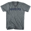 Minnesota State Stencil Adult Tri-Blend V-neck Womens T-shirt by Ultras