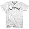 Slovenia City Vintage T-shirt in Grey Heather by Mile End Sportswear