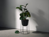 Menu Wire Pot, 404 Black