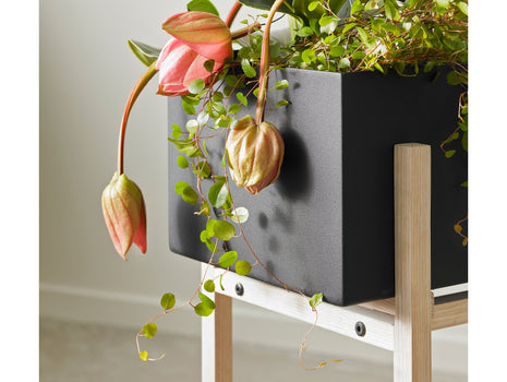 Botanic Stand by Design House Stockholm