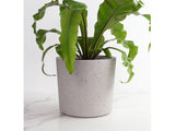 Large Round Concrete Planter by Conpot