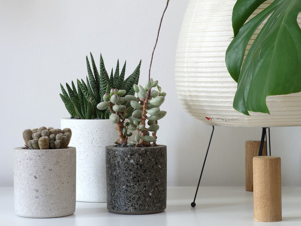 Medium Round Concrete Planter By Conpot 183 Really Well Made