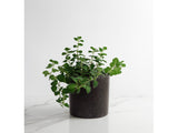 Black Basalt, Medium Round Concrete Planter