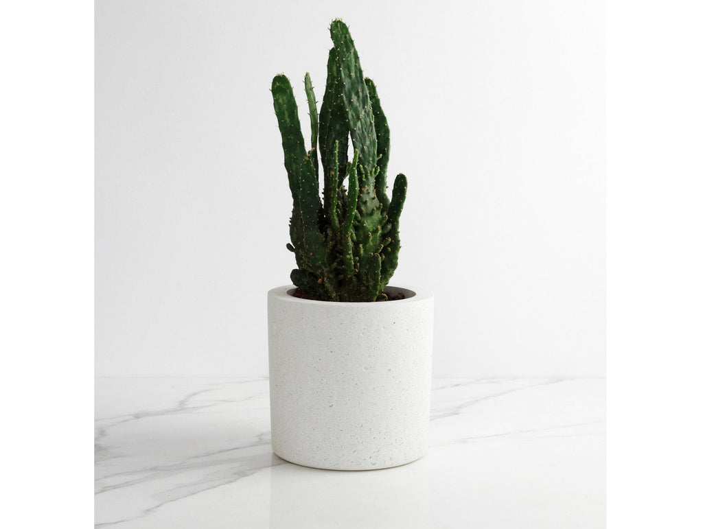 White Marble, Medium Round Concrete Planter
