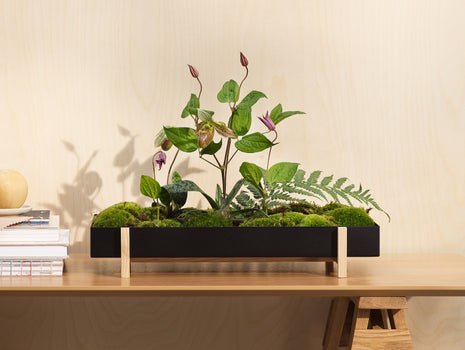 Flower Tray by Design House Stockholm