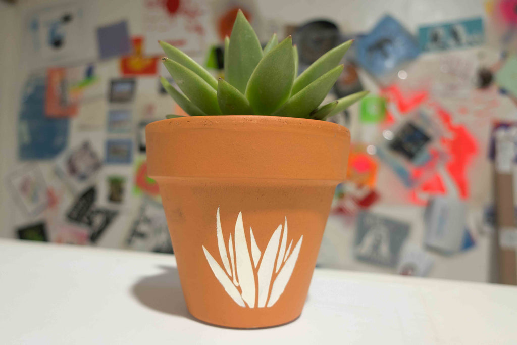 Create a Custom Succulent Pot Using a Stencil