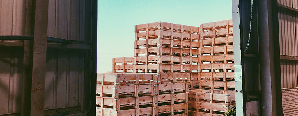 Pallets and Sky at Warehouse