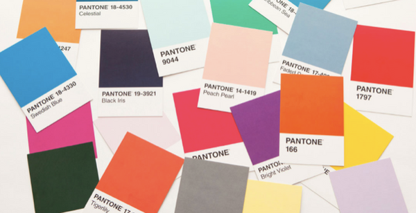pantone color chips
