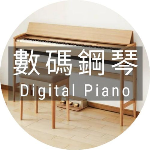 2018 數碼鋼琴 DIGITAL PIANO