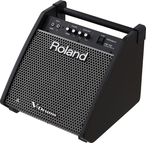 Roland PM100 electronic drum speaker