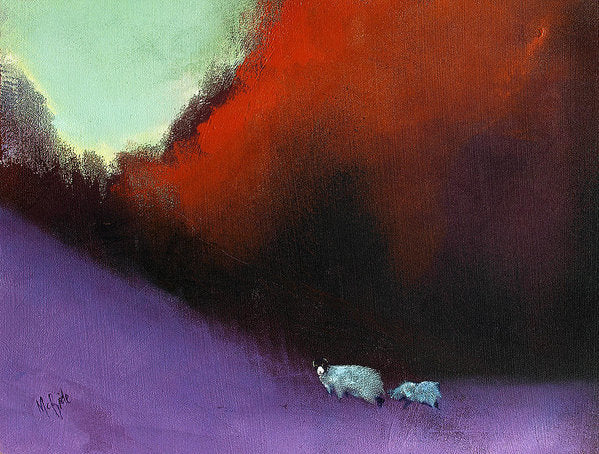 Heathland Sheep - Art Print - Neil McBride Art