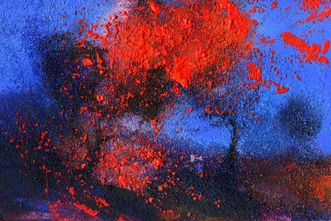 Flame Tree original contemporary landscape painting