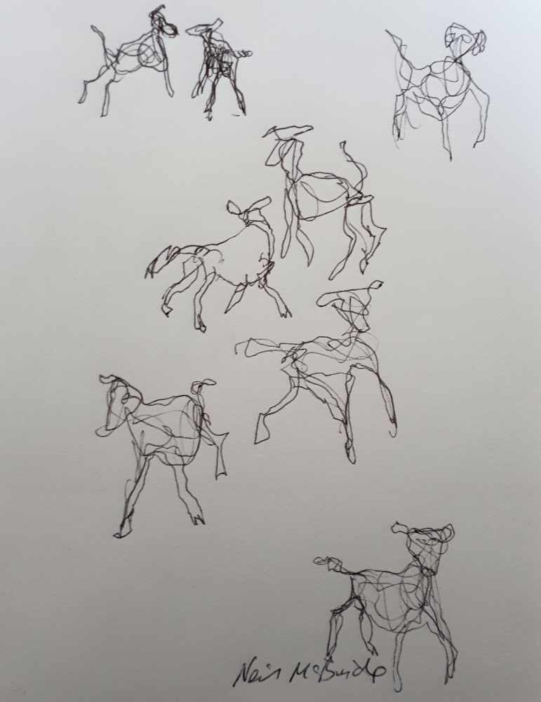 Original sketch drawings of dogs titled Eight Dog Pack © Neil McBride 2020