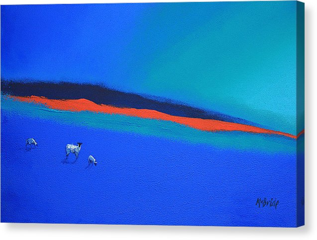 Landscape canvas prints uk - Three blue sheep and a red highlight © Neil McBride 2019