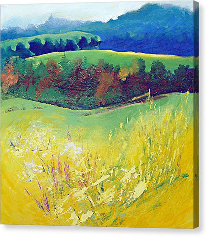 Yellow Meadow - Canvas Print