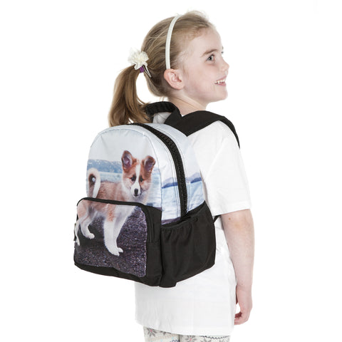 Icelandic dog backpack